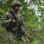 The Jungles of War
