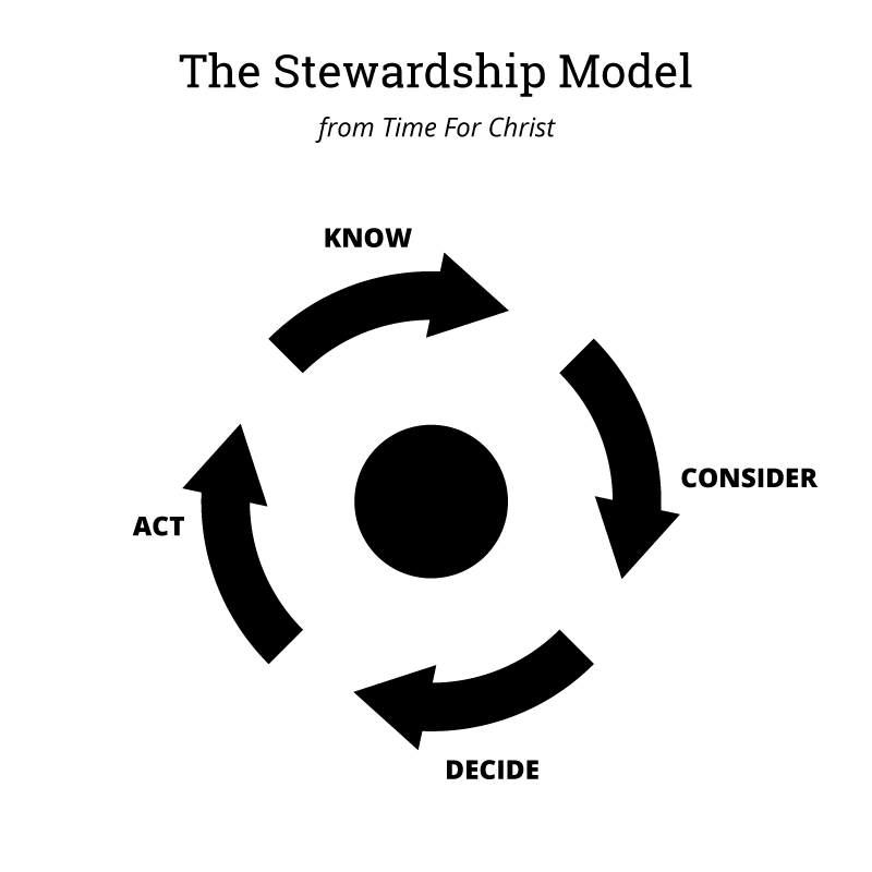 The Stewardship Model diagram