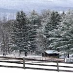 White Sulphur Springs--Winter Retreat, Week 1