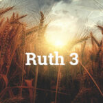 Ruth Chapter 3